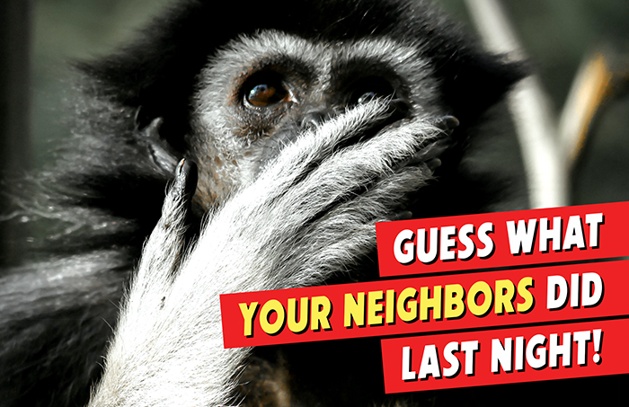 Real Estate - Guess What Your Neighbors Did Last Night